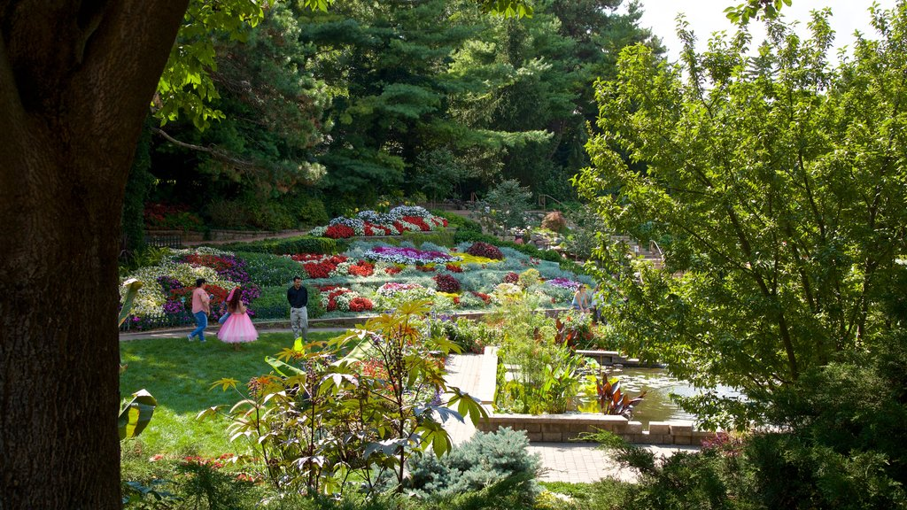 Sunken Gardens which includes a garden and flowers as well as a family