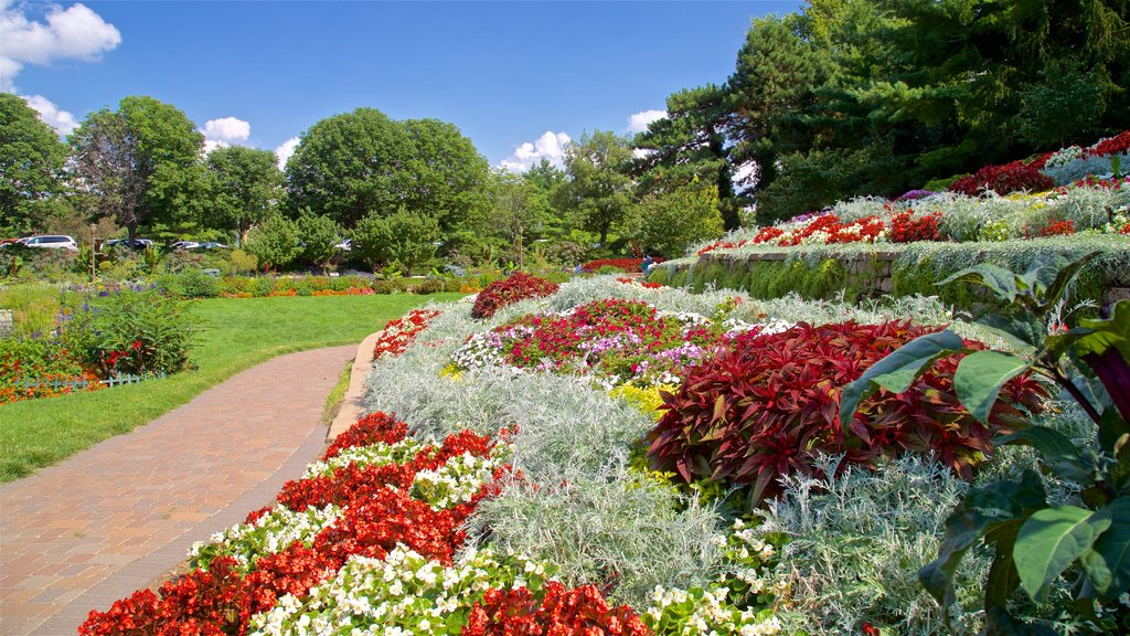 Sunken Gardens which includes a park, wildflowers and flowers
