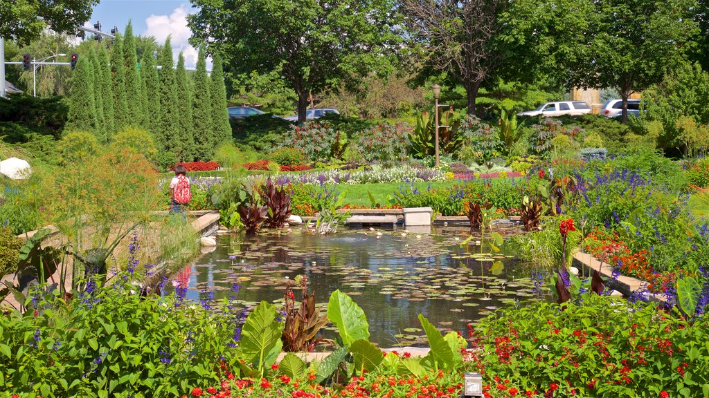 Sunken Gardens which includes flowers, a garden and wildflowers