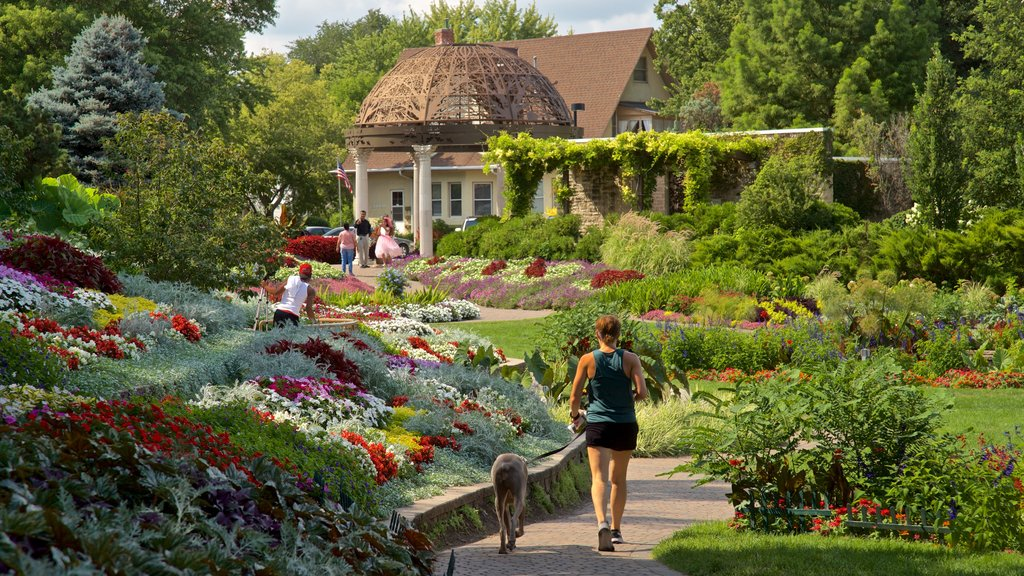 Sunken Gardens showing flowers, hiking or walking and wildflowers