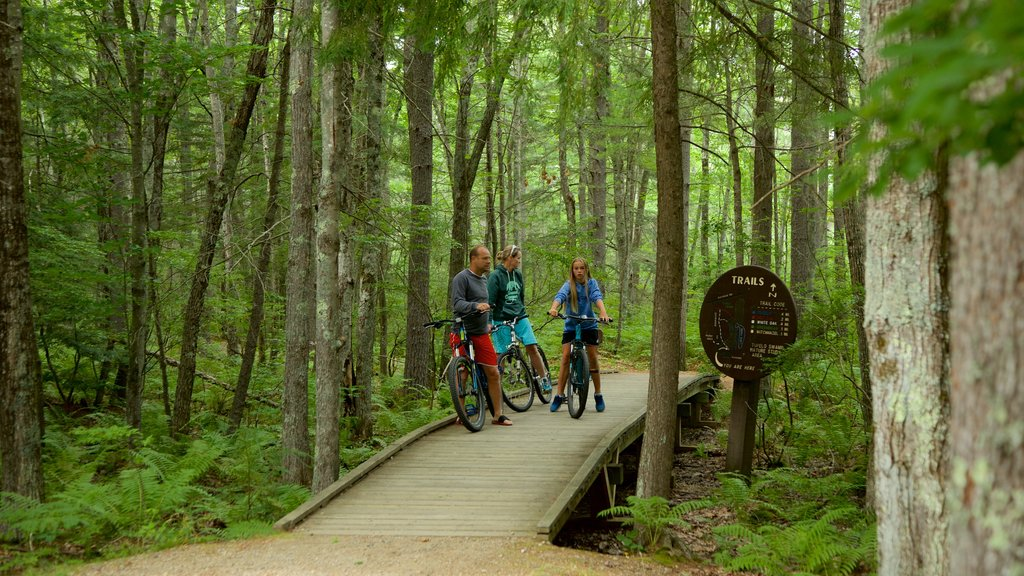 Ferry Beach State Park showing forests and cycling as well as a family