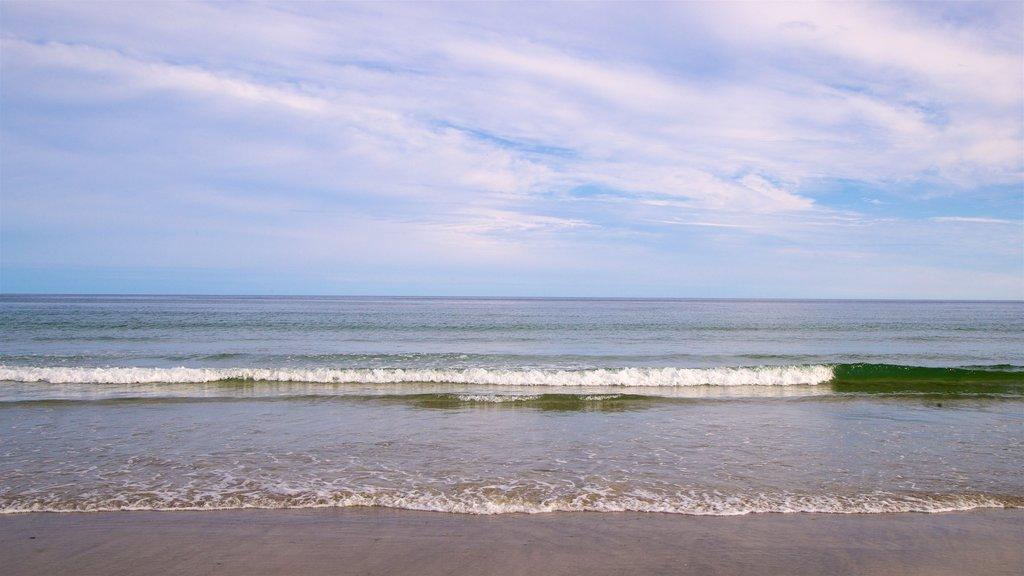 Higgins Beach featuring a beach and general coastal views