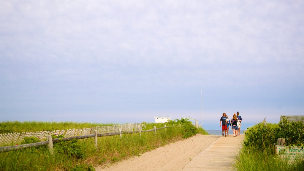 Scarborough Beach State Park which includes general coastal views as well as a small group of people