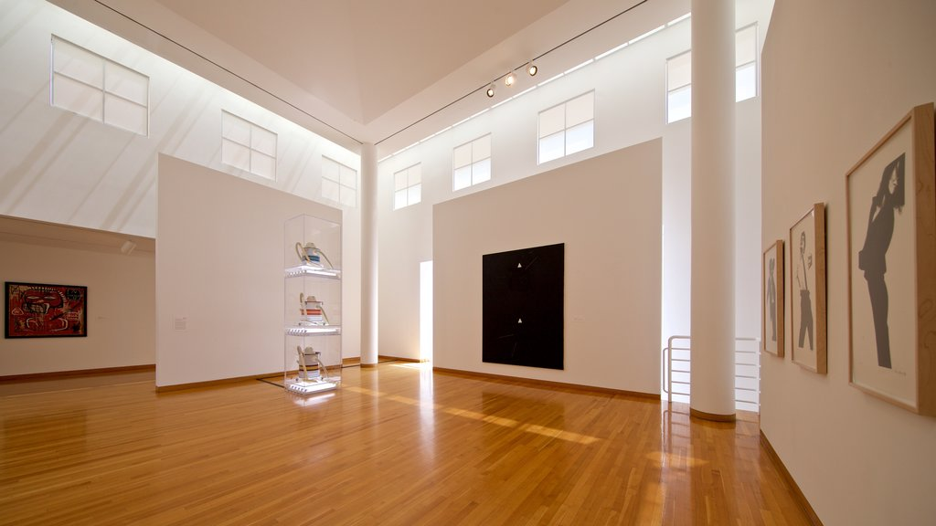Des Moines Art Center showing art and interior views