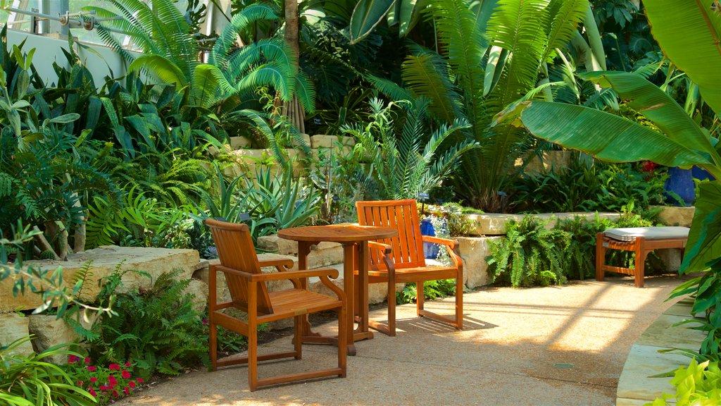 Reiman Gardens featuring a park