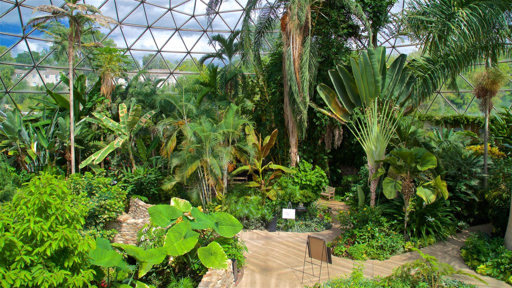 Des Moines Botanical Center showing interior views and a park