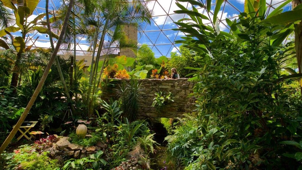 Des Moines Botanical Center showing a garden, a bridge and interior views