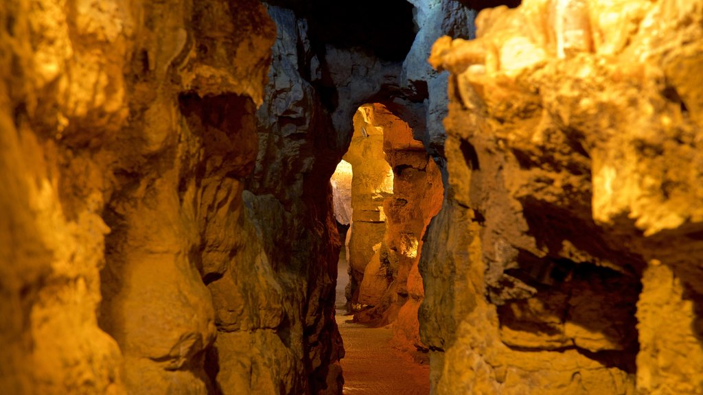 Crystal Lake Cave showing caves