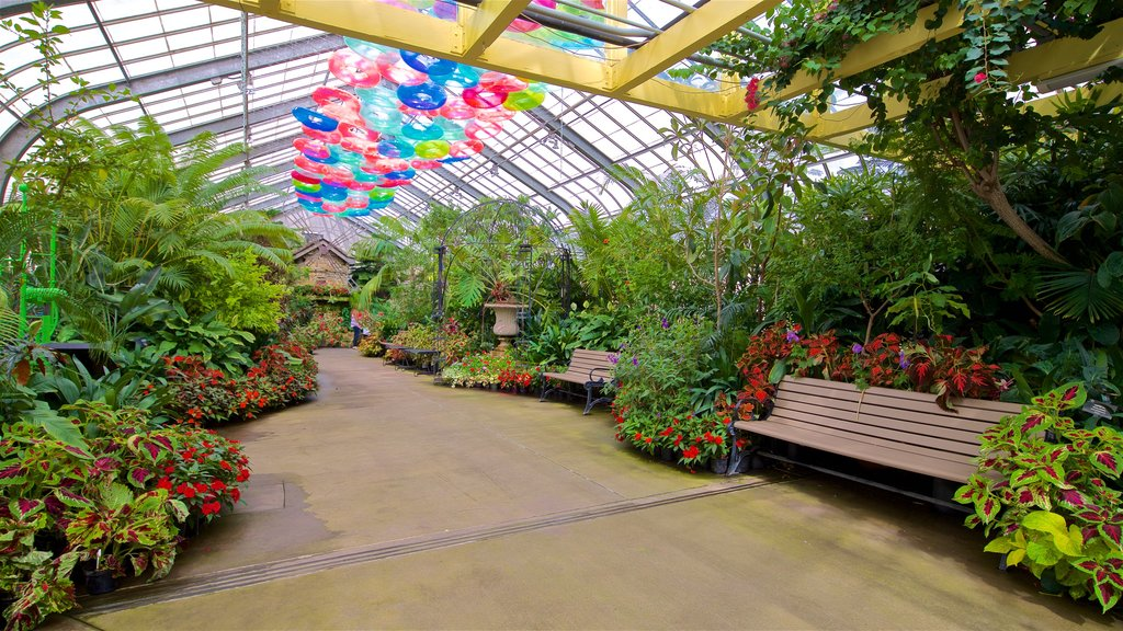 Vander Veer Botanical Park which includes wildflowers, a garden and interior views