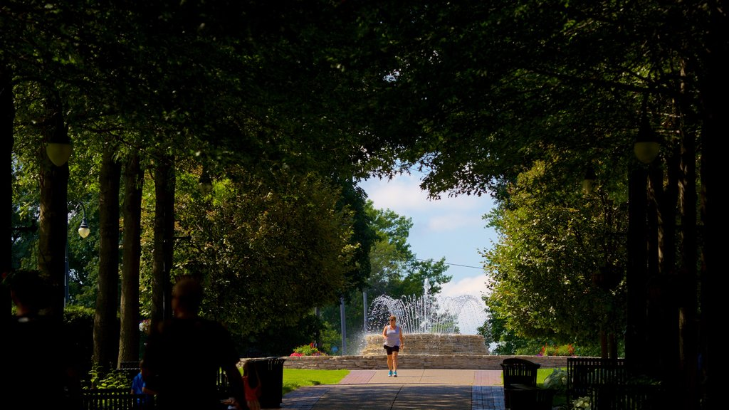 Vander Veer Botanical Park featuring a fountain, hiking or walking and a park