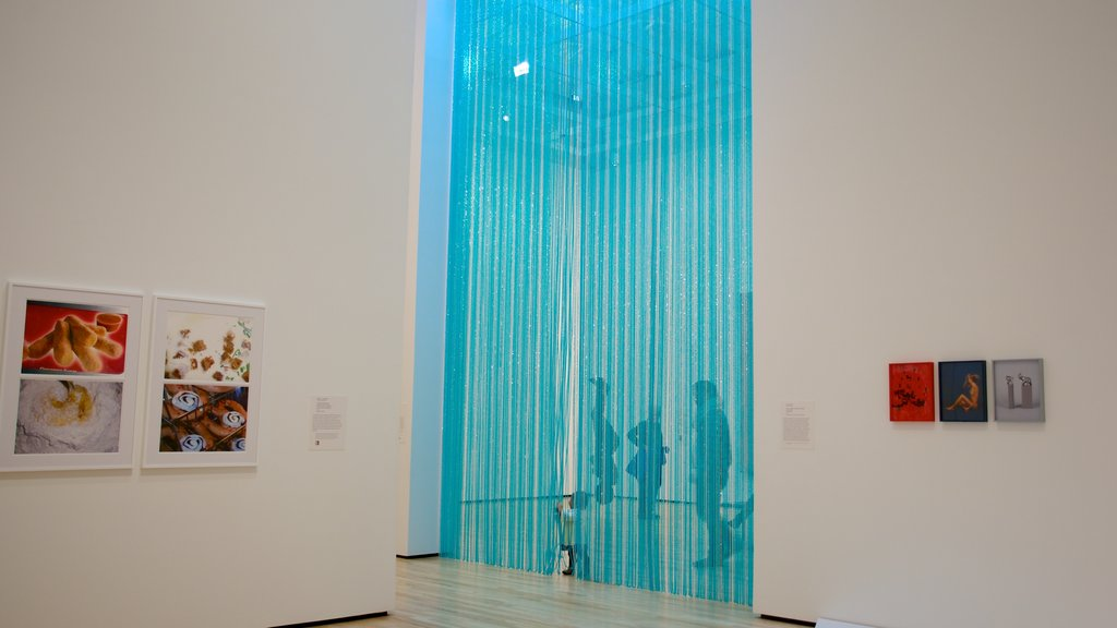 Baltimore Museum of Art featuring art and interior views