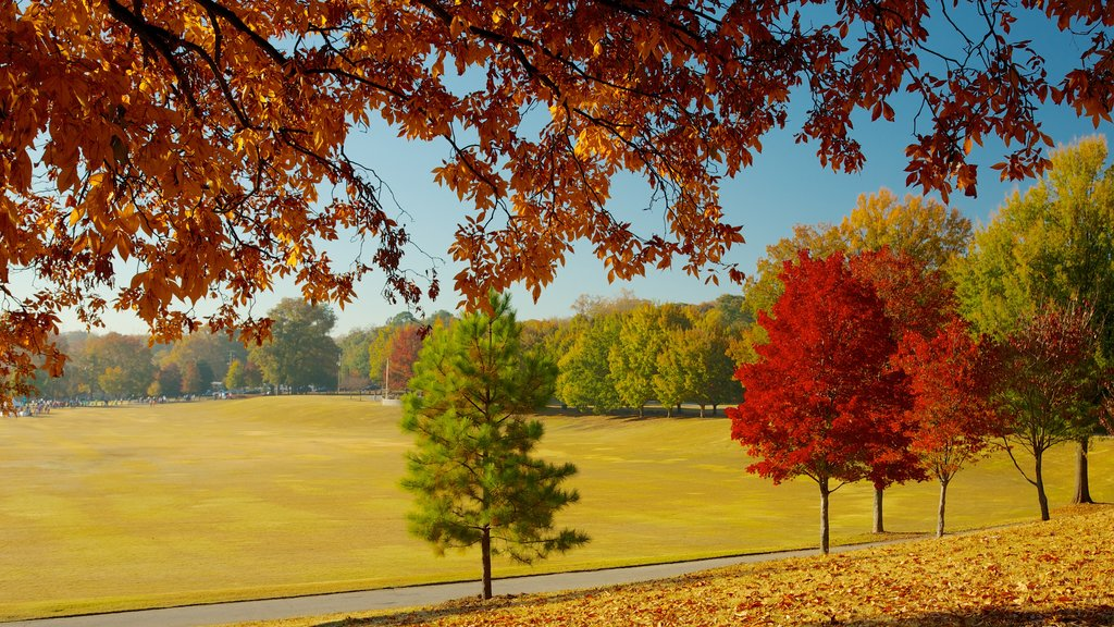 Piedmont Park mostrando un parque, vistas de paisajes y los colores del otoño