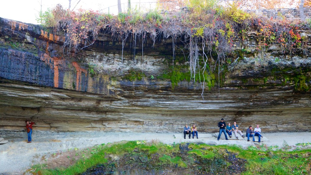 Minnehaha Park which includes tranquil scenes and a park
