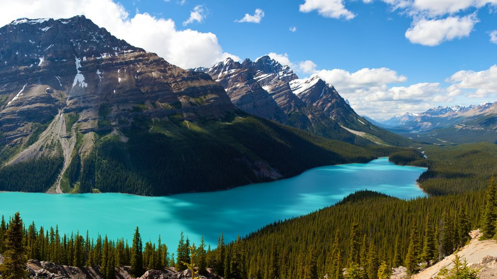 Peyto Lake featuring mountains, a lake or waterhole and views