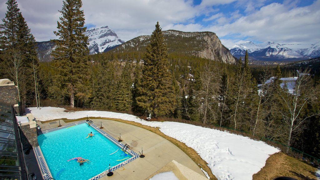 Banff National Park featuring forests, landscape views and a hot spring