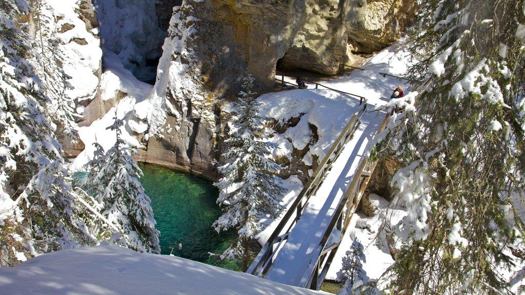Johnston Canyon ofreciendo vistas de paisajes, un río o arroyo y nieve