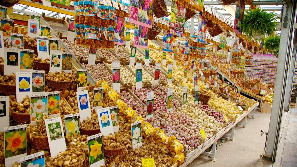 Mercado de las flores ofreciendo mercados