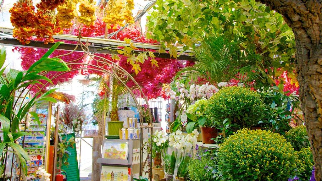 Mercado de las flores ofreciendo flores y mercados
