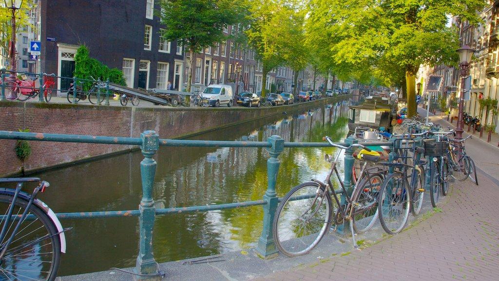 Grachtengordel mostrando ciclismo, una ciudad y escenas urbanas