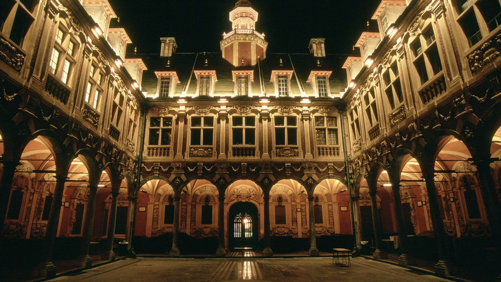 Lille featuring a castle, night scenes and heritage architecture