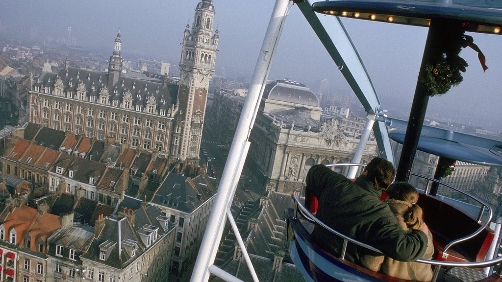 Lille featuring views, a church or cathedral and heritage architecture