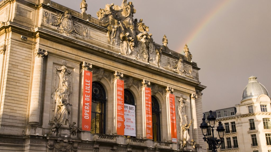 Lille featuring a city, chateau or palace and heritage architecture
