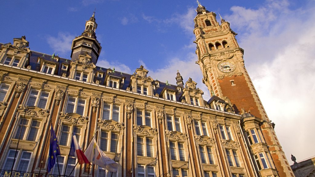 Lille featuring heritage architecture, a castle and a city
