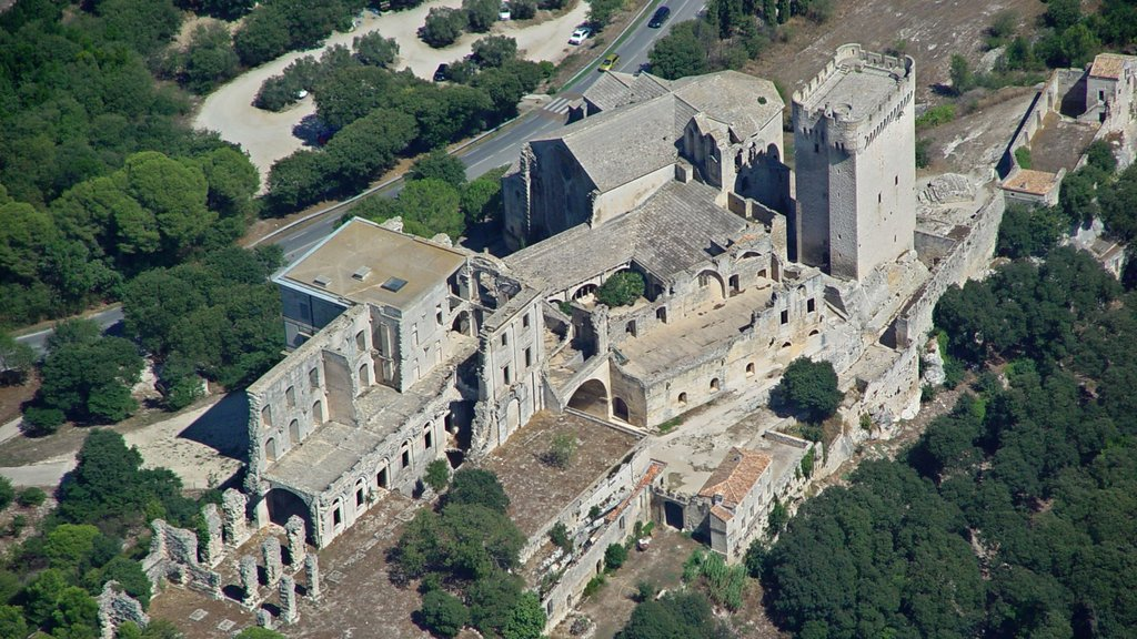 Arles which includes a castle and heritage architecture