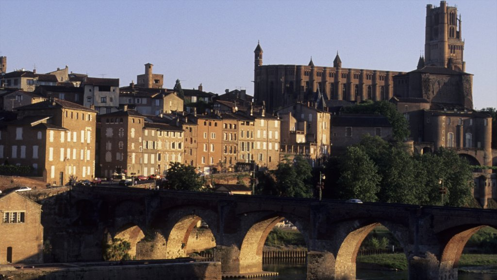 Albi which includes a church or cathedral, a bridge and views