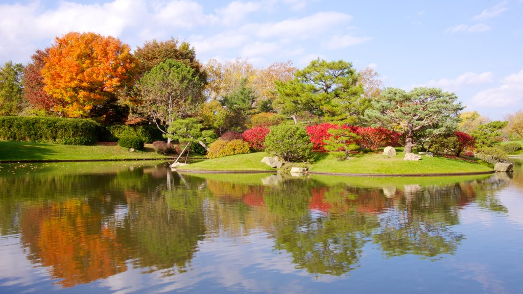Missouri Botanical Gardens and Arboretum showing landscape views, a pond and a garden