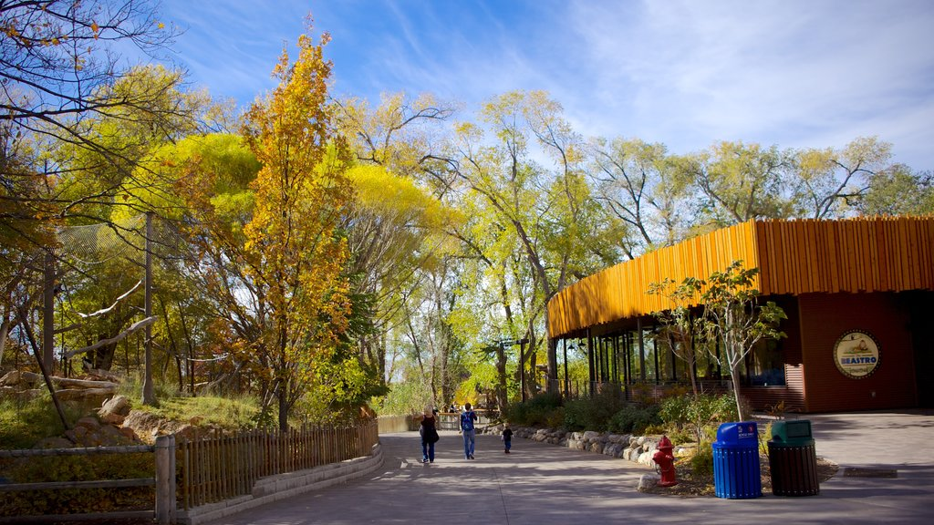 Hogle Zoo featuring fall colors, zoo animals and landscape views