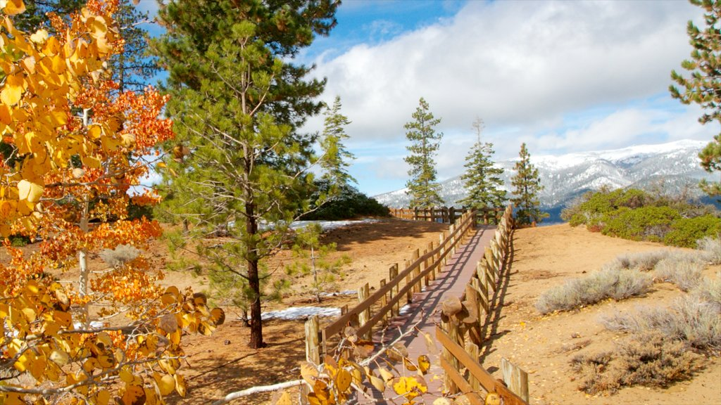 Sand Harbor of Lake Tahoe Nevada State Park featuring landscape views and autumn leaves