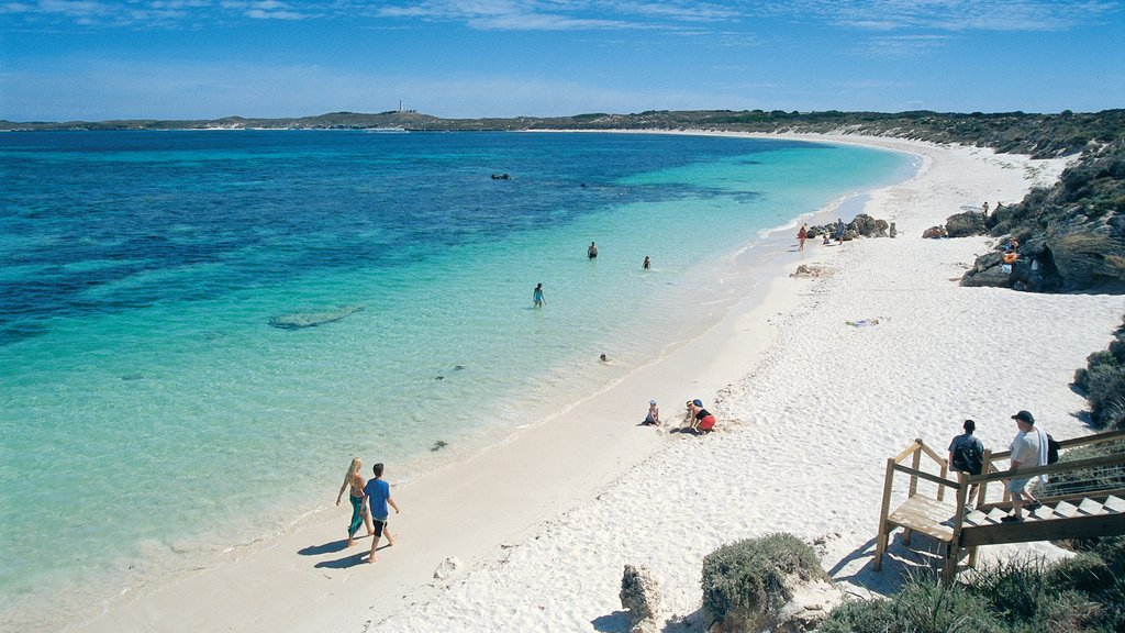 Rottnest Island showing swimming, a beach and landscape views