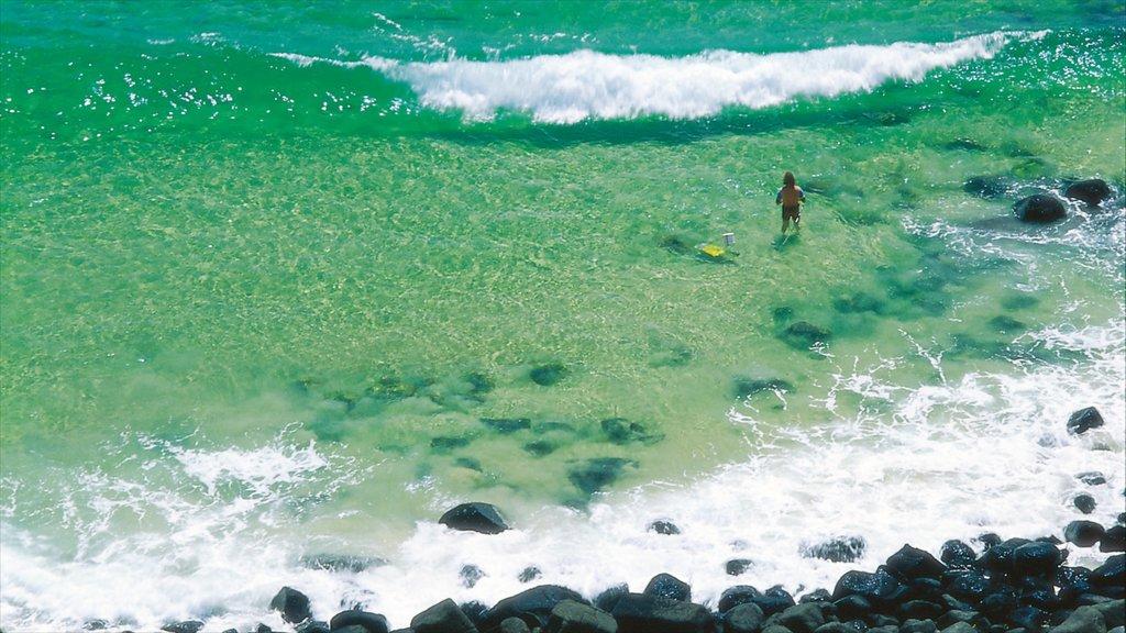 Burleigh Beach featuring rugged coastline as well as an individual male