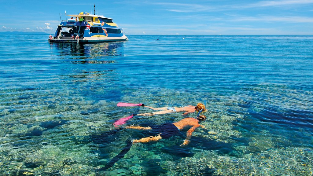 Great Barrier Reef showing snorkeling and coral as well as a couple