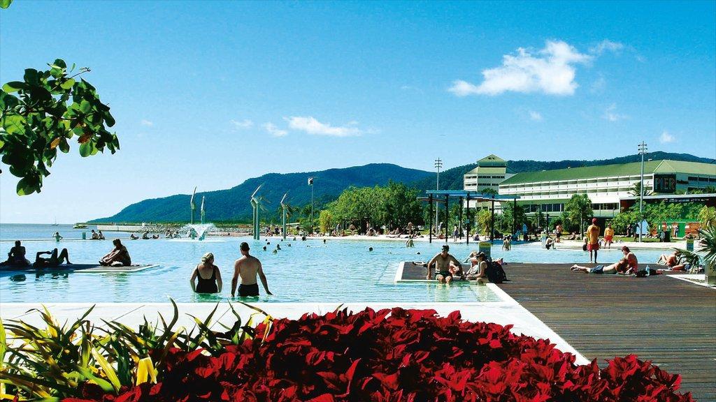 Cairns Esplanade mostrando una alberca, natación y un hotel o resort de lujo