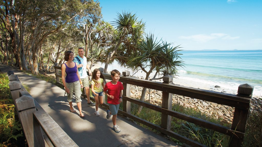 Noosa Heads showing hiking or walking and general coastal views as well as a family