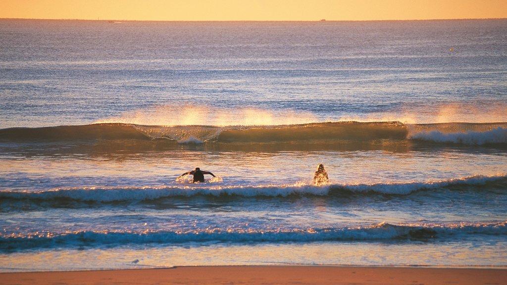 Maroochydore que incluye surf, una playa y una puesta de sol
