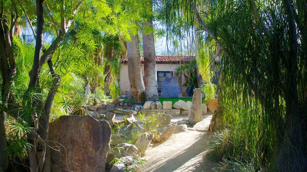 Moorten Botanical Garden and Cactarium featuring landscape views and a park