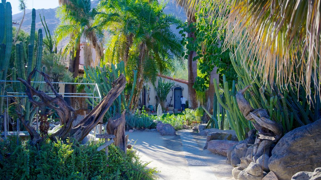 Moorten Botanical Garden and Cactarium featuring a garden, tropical scenes and landscape views