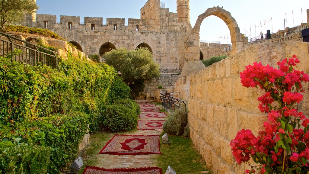 Tower of David Museum of the History of Jerusalem showing a park, flowers and heritage elements