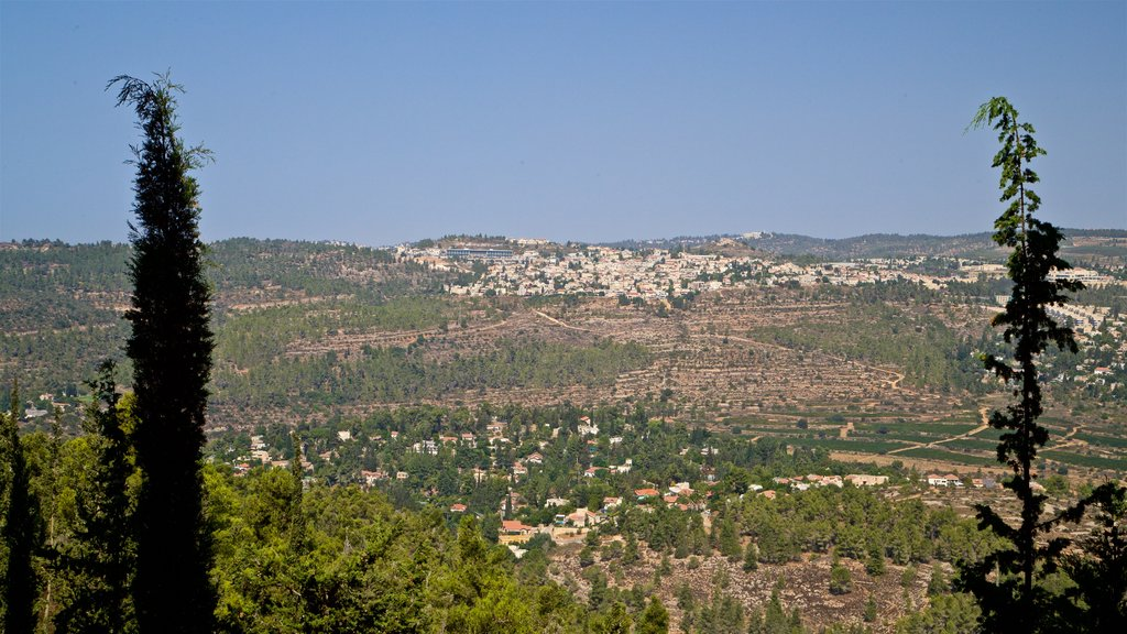 Yad Vashem showing landscape views and tranquil scenes
