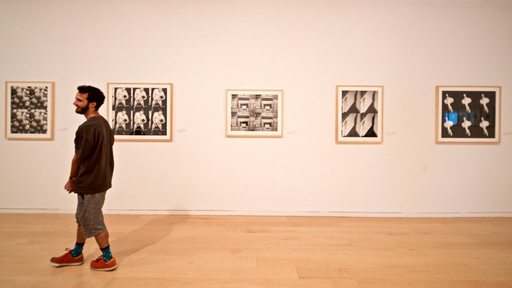Tel Aviv Museum of Art showing art and interior views as well as an individual male