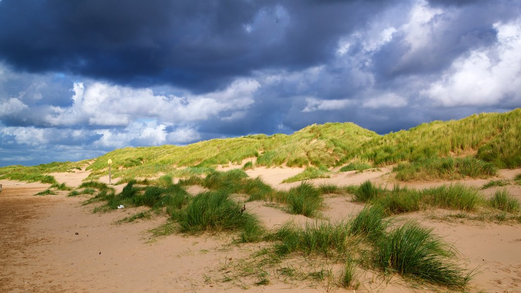 Ainsdale Beach showing landscape views and tranquil scenes