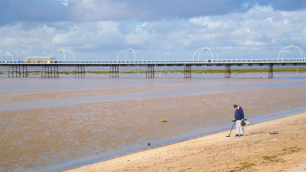 Southport Pier which includes a bridge, a sandy beach and general coastal views