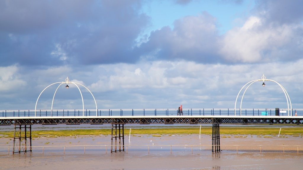 Southport Pier showing a bridge and general coastal views
