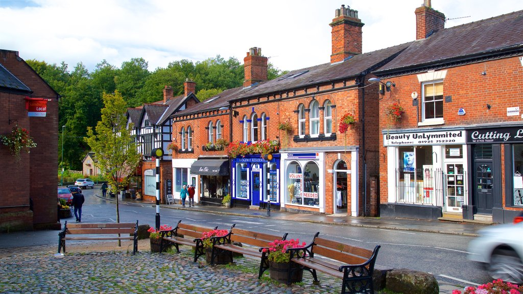 Lymm showing flowers and a small town or village