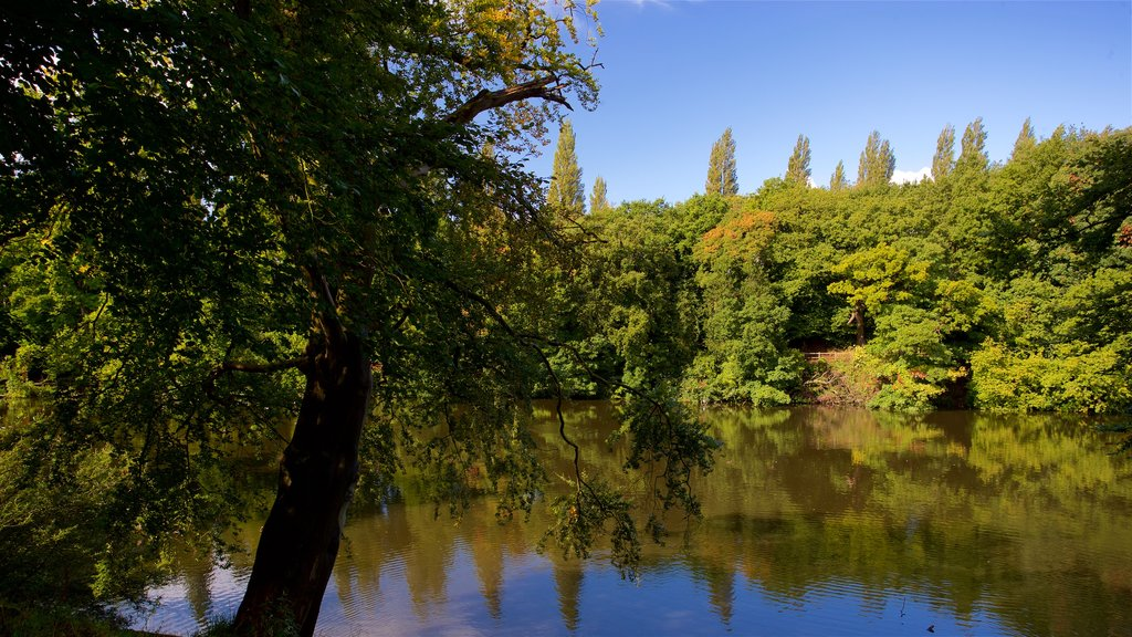Lymm which includes a pond