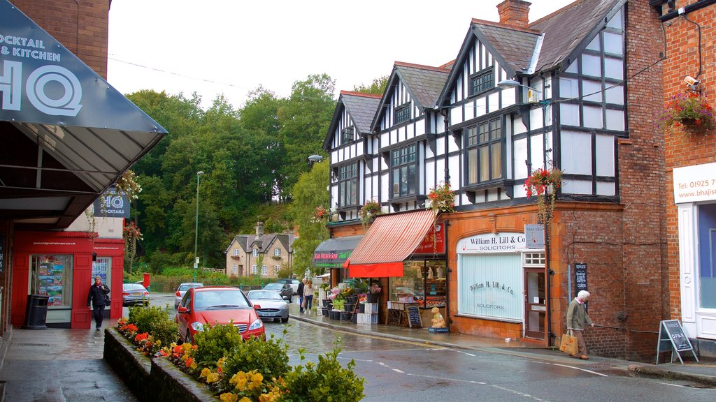 Lymm featuring a small town or village and flowers