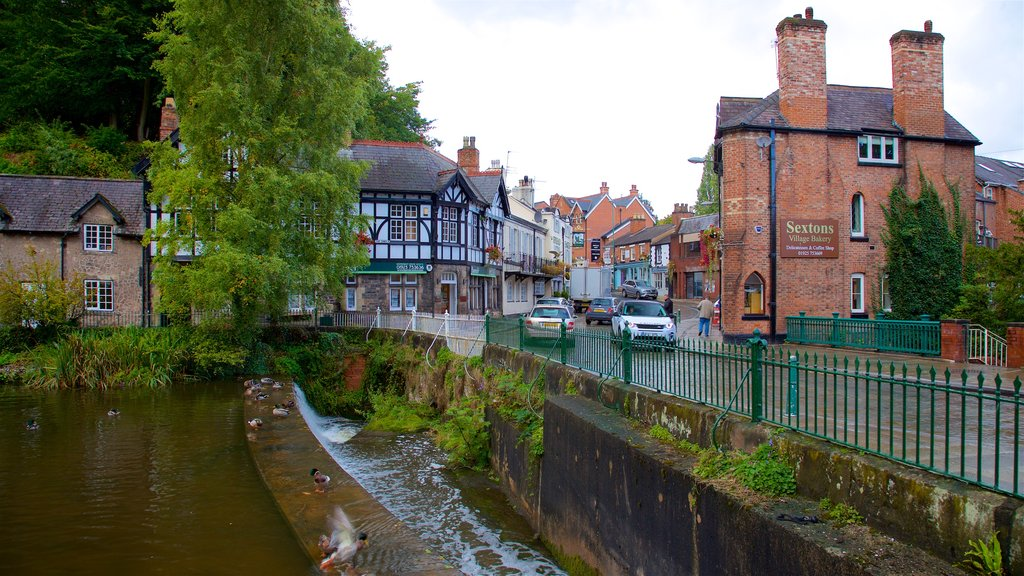 Lymm which includes a pond, a small town or village and bird life